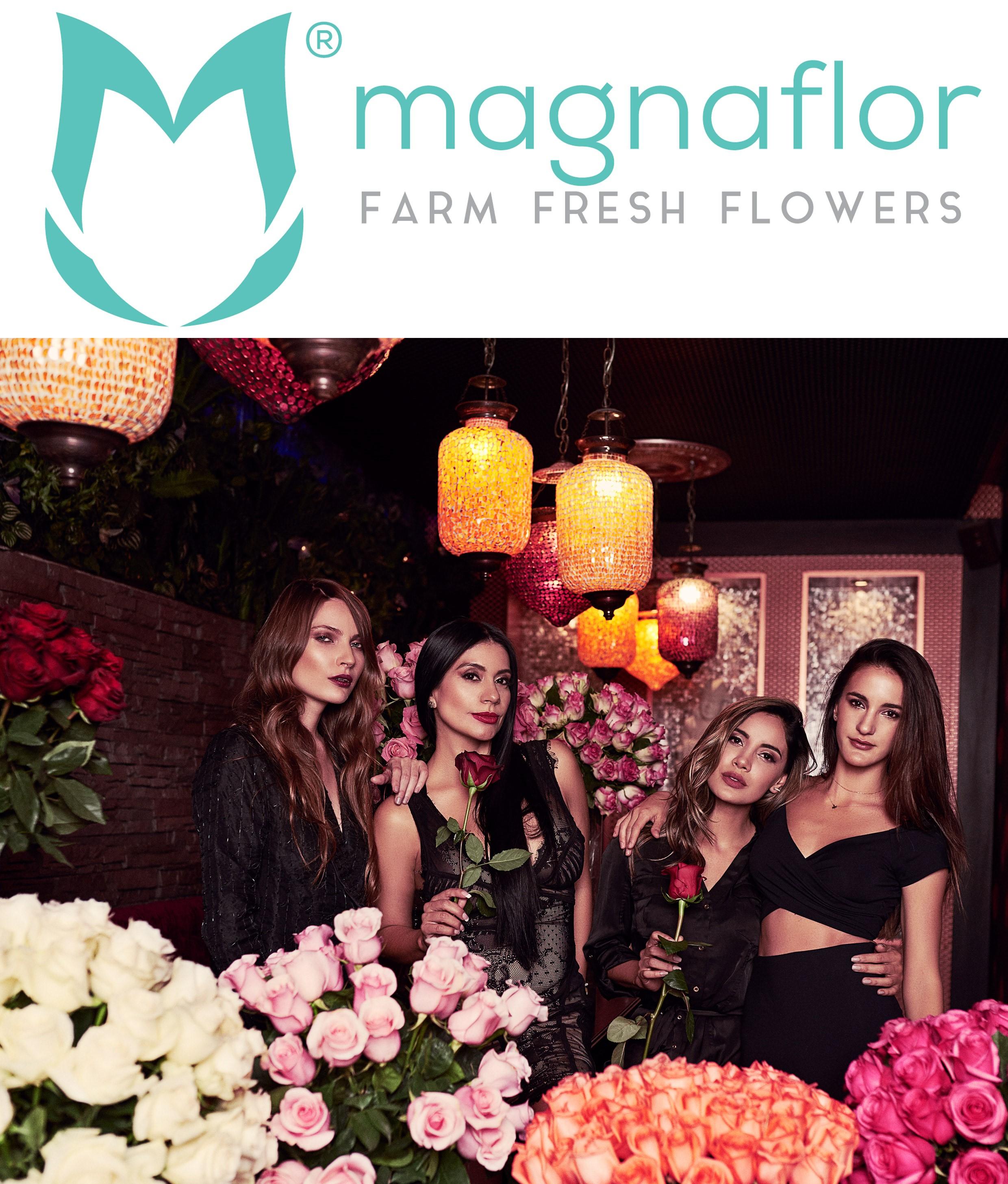Magnaflor: The Best Online Wholesale Flower Retailer