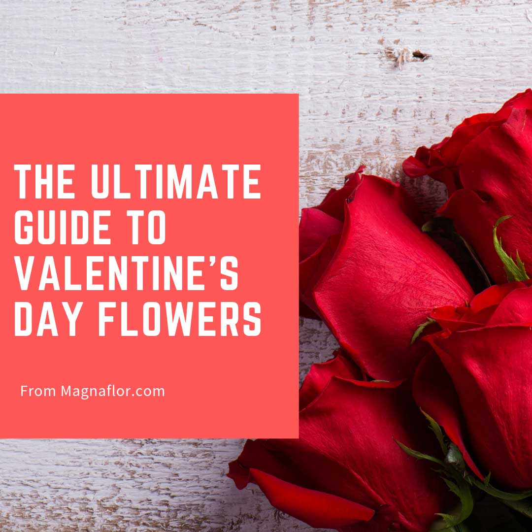 The Ultimate Guide To Valentine's Day Flowers