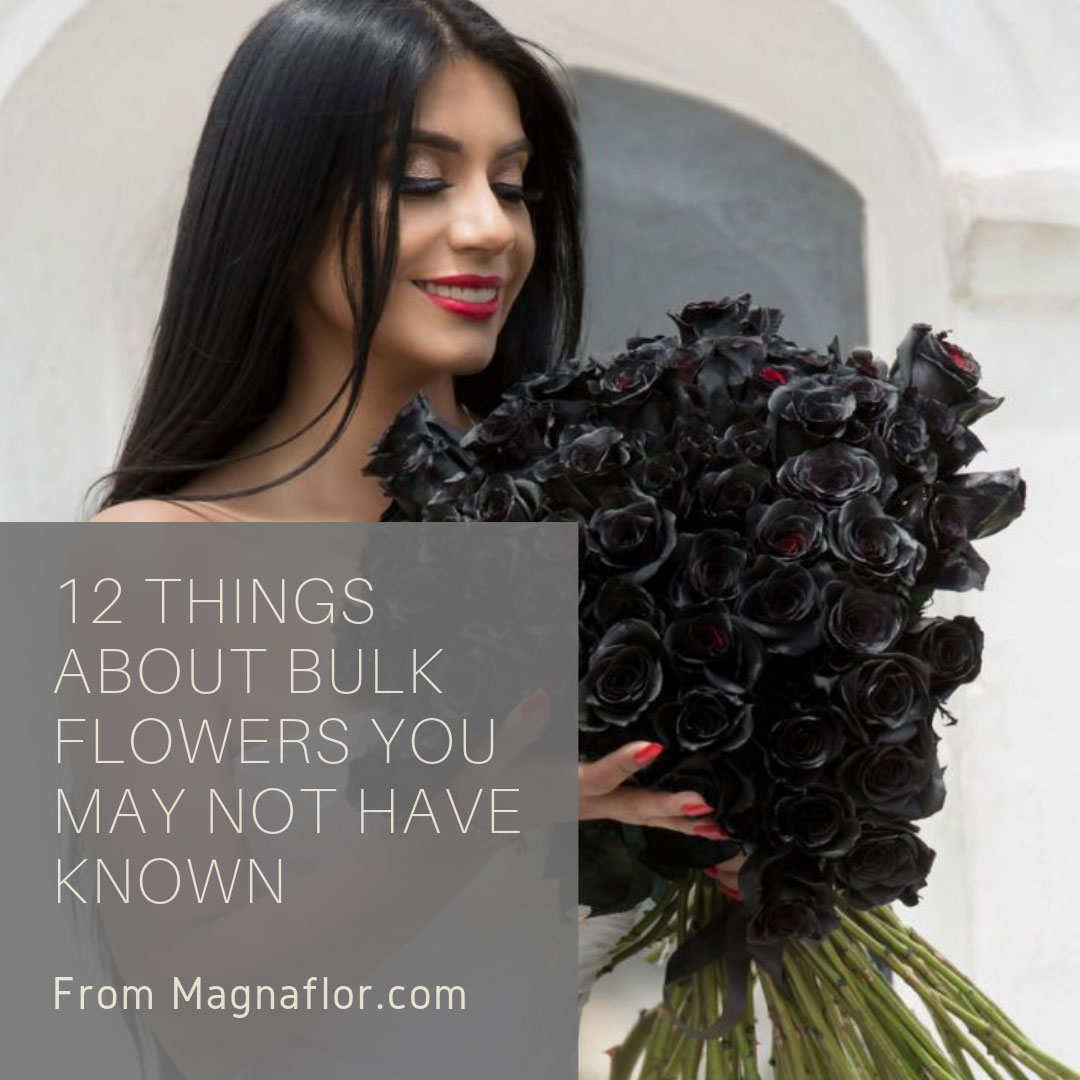 12 Things About Bulk Flowers You May Not Have Known