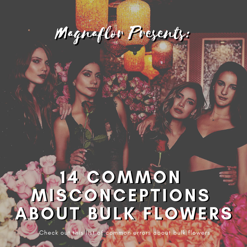 Check Out The List Of 14 Common Misconceptions About Bulk Flowers Below.