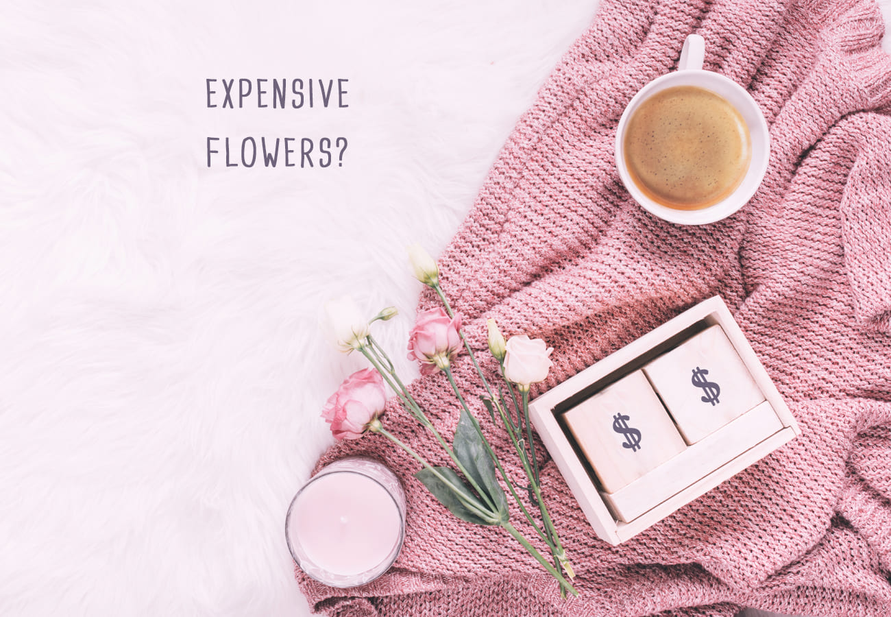 Expensive Flowers