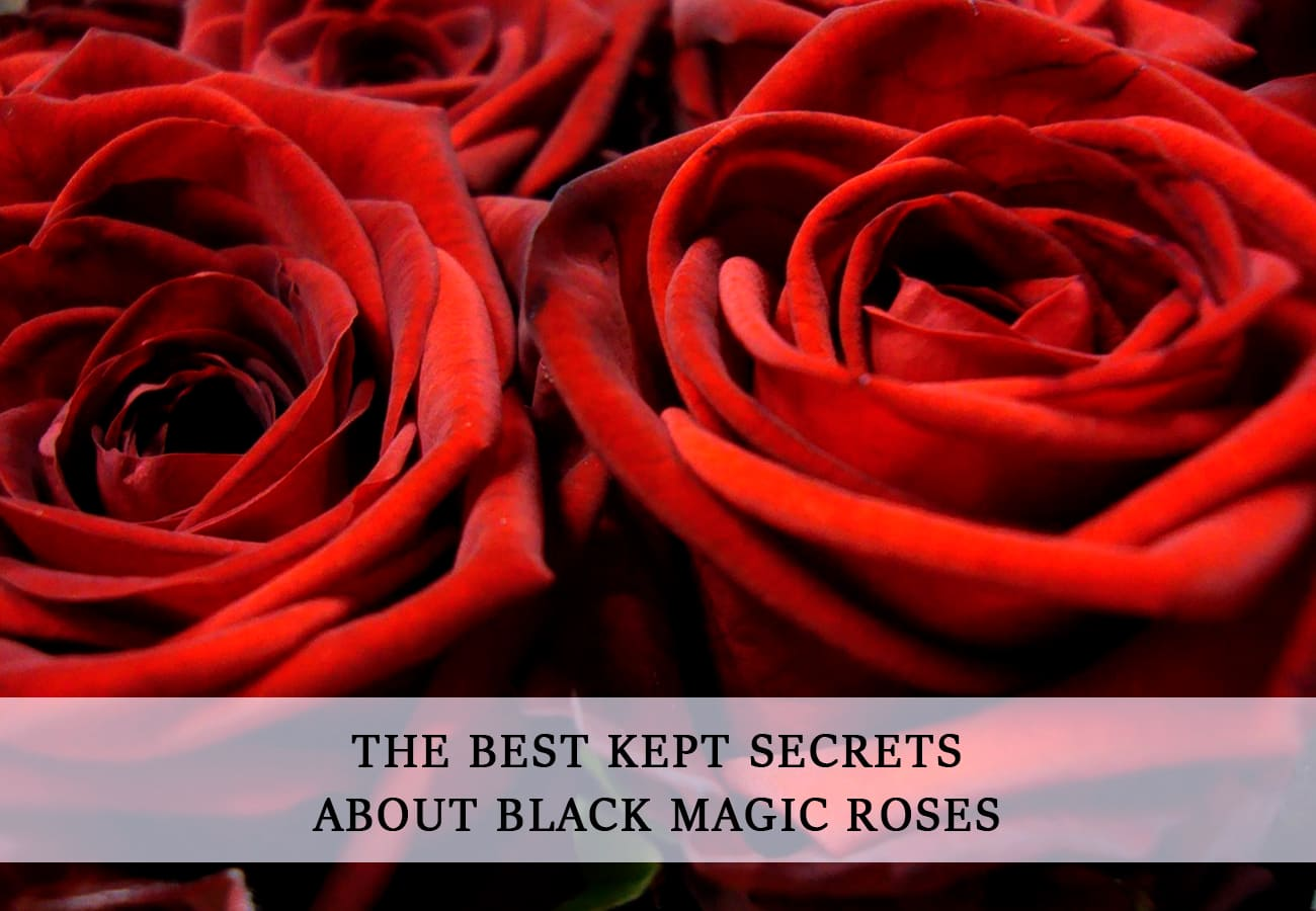 PORTADA SECRETS BLACK MAGIC