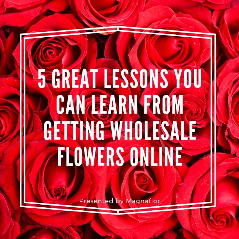 5 Great Lessons You Can Learn From Getting Wholesale Flowers Online