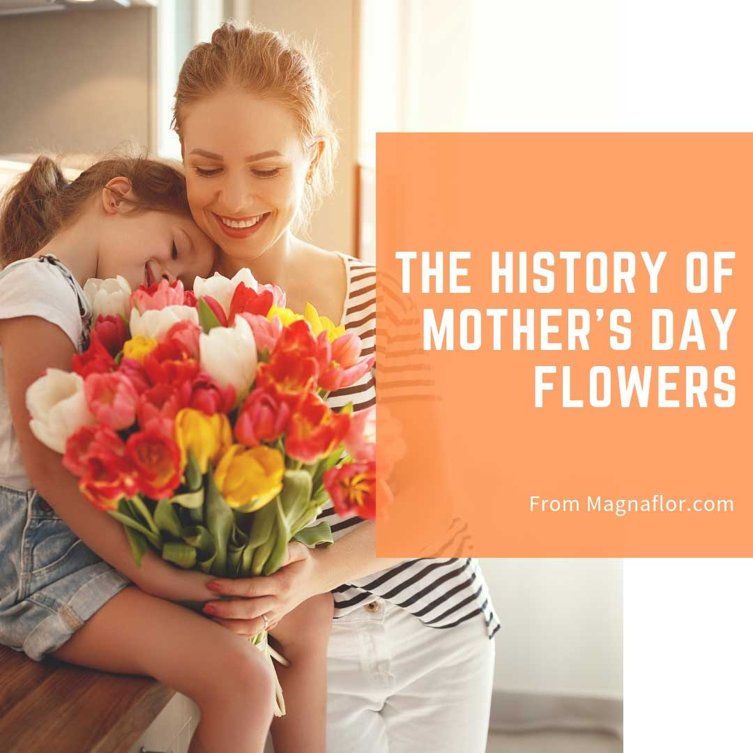 History Of Mother's Day Flowers