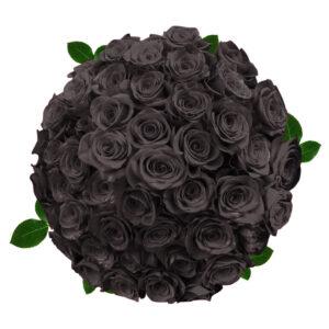 Black Roses More Than Just Roses Magnaflor Blog,Lovebirds As Pets