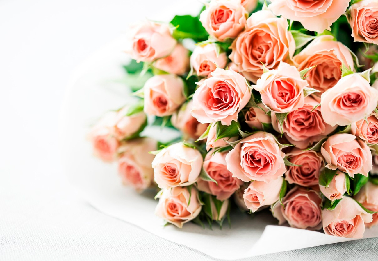 Premium Spray Roses, The Sweetest Of The Flowers